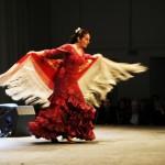 Flamenco_6572